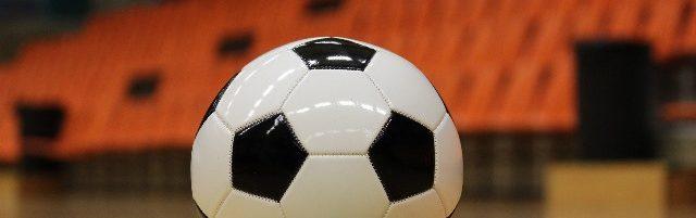 Trzemeszeńska Liga Piłki Nożnej Halowej AVACO CUP
